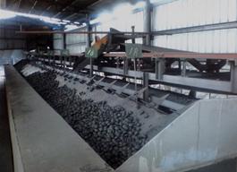 塔式型煤干燥机